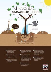 zasadimo drvo