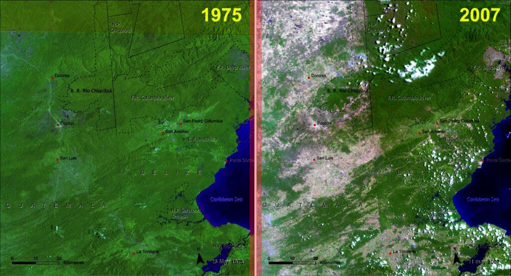 deforestation 1975-2007
