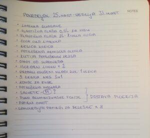 izvod iz dnevnika